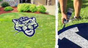 Brigham Young University Cougar