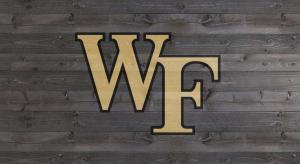 "Wake Forest ""WF"" - Tailgater stencil kit"