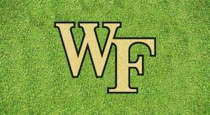 "Wake Forest ""WF"" - Lawn Stencil Kit"