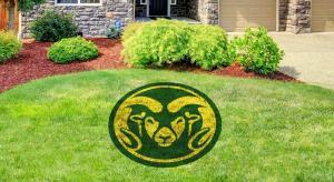 Colorado State Ram Lawn Stencil