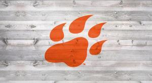 Sam Houston Paw logo stencil