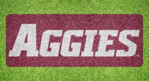 New Mexico State Aggies - Lawn Stencil Kit