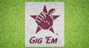 """Texas A&M """"Gig 'Em"""" - Lawn Stencil Kit"""