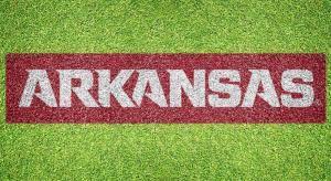 "Arkansas ""Arkansas"" - Lawn Stencil Kit"