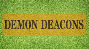 Wake Forest Stencil Demon Deacons Stencil Kit