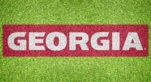 University of Georgia - Lawn Stencil Kit