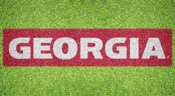 University of Georgia - Lawn Stencil Kit
