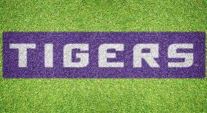 "Louisiana State ""TIGERS"" - Lawn Stencil Kit"