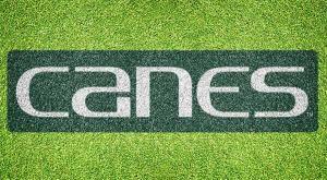 """Miami """"Canes"""" - Lawn Stencil Kit"""