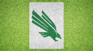 University of North Texas Eagle - Lawn Stencil Kit
