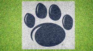 Penn State Nittany Lion Paw - Lawn Stencil Kit