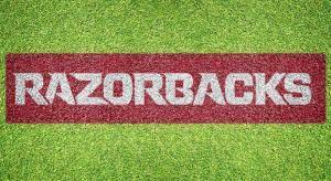 "Arkansas ""Razorbacks"" - Lawn Stencil Kit"