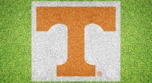 """Tennessee """"T"""" - Lawn Stencil Kit"""