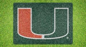 """Miami """"U"""" - Lawn Stencil Kit"""