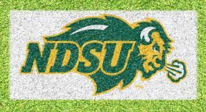 North Dakota State Bison - Lawn Stencil Kit