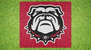 Georgia Bulldog UGA Face - Lawn Stencil Kit