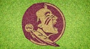 Florida State Seminole - Lawn Stencil Kit