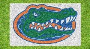 Florida Gator Head - Lawn Stencil Kit