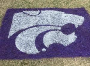 Kansas State Wildcat - Lawn Stencil Kit