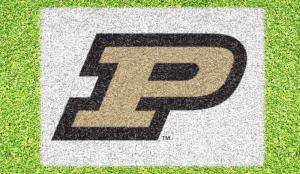 "Purdue ""P"" - Lawn Stencil Kit"