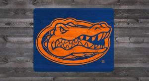 Florida Gator Head - Tailgater Stencil Kit
