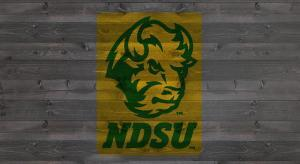 NDSU Mascot stencil kit