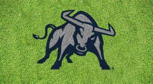 Utah State Bull lawn stencil kit