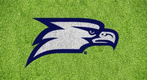Georgia Southern Eagle Stencil