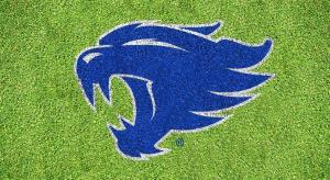 Kentucky Wildcats Lawn Stencil Kit