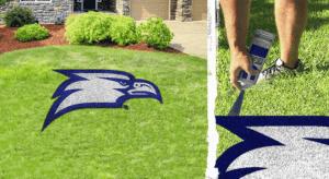 Georgia Southern Eagle Lawn Stencil