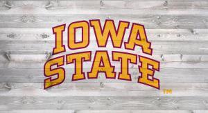 Iowa State Stencil kit